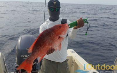 Snapper Fishing Charter in Tampa Florida