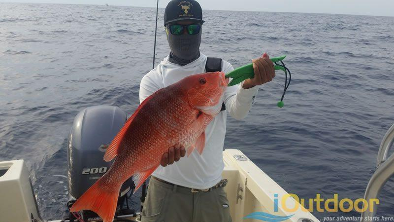 Snapper Fishing Charter