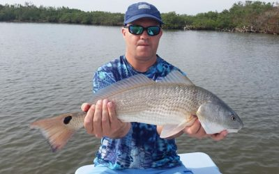 Tampa Florida Fishing Charter for Florida Redfish